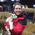 holding a lamb